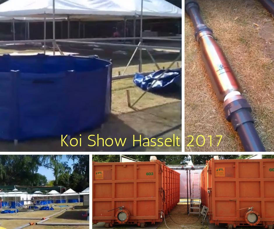 afb. Koi Show Hasselt 2017 - achter de schermen